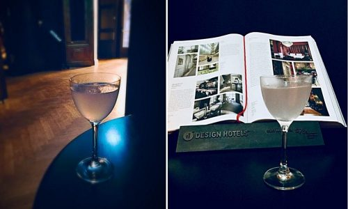 The Aviation Project – Having an Aviation at Provocateur